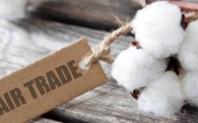 Lieferkettengesetz – warum sollte ein Unternehmen ethisch handeln?